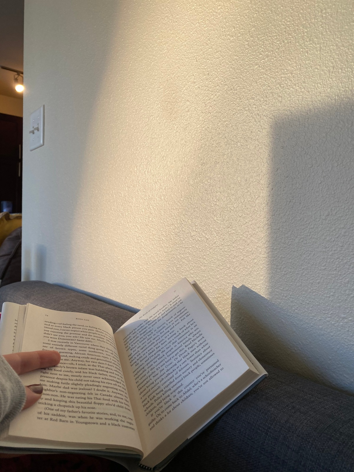 reading a book in sunset